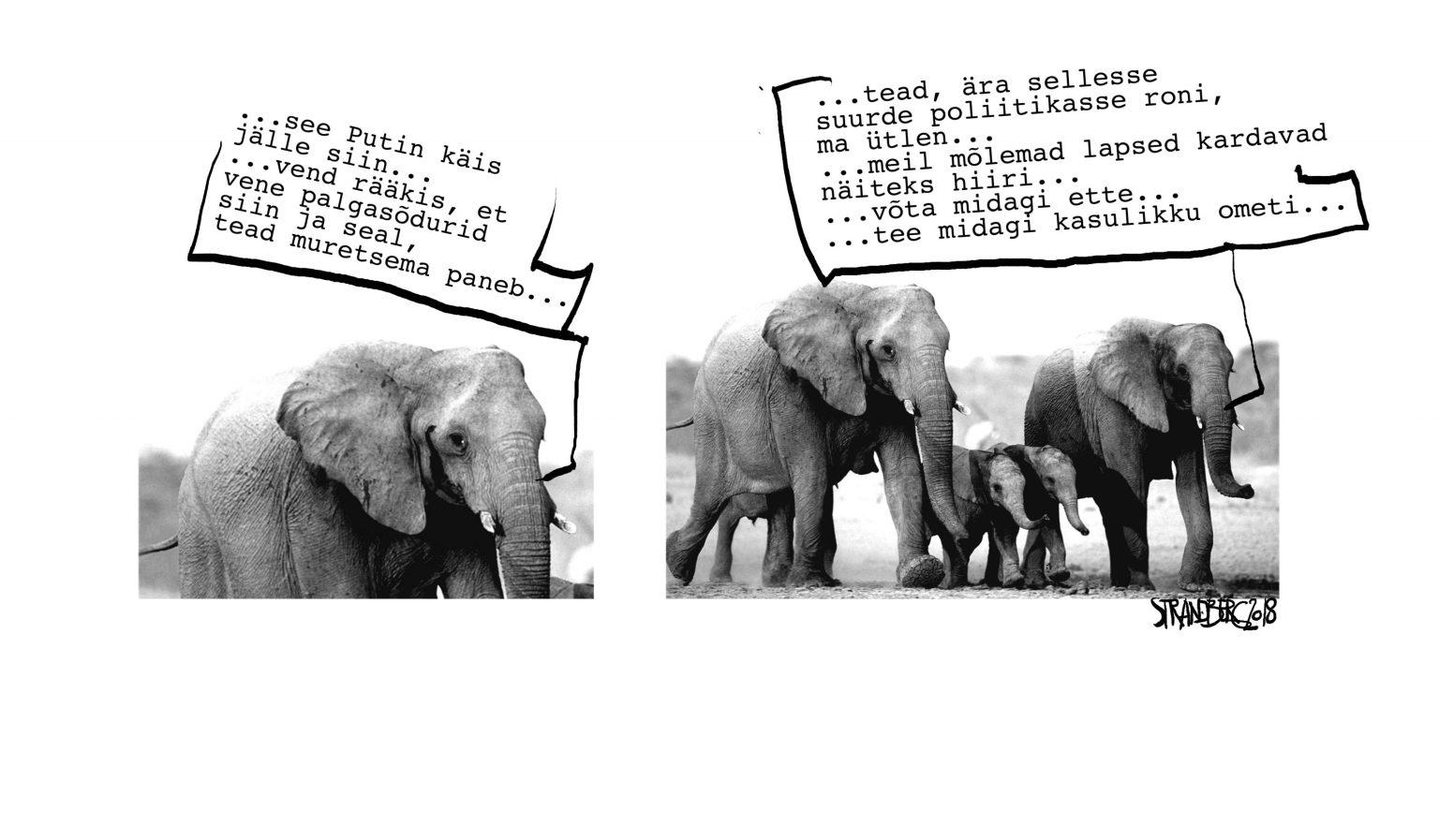 Karikatuur: Elevandid Aafrikas