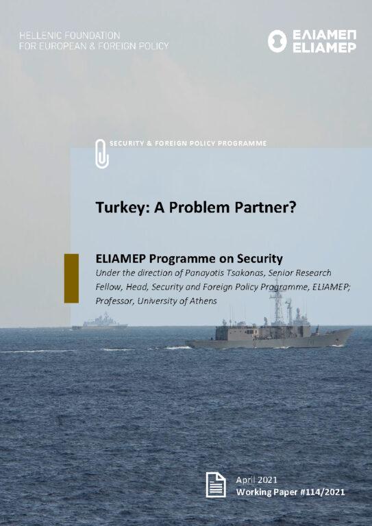 Türgi: probleemi partner?
